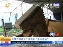 """[视频]男子7个月造出三国演义""""木牛流马"""""""
