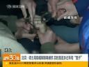 [视频]北京高级编辑贩毒称为回家过年有面子