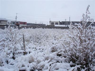[视频]青海南部现零下45.9℃罕见低温