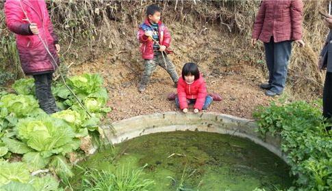 [视频]六岁女童拉住掉入水坑小伙伴 坚持半小时