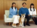 """[视频]日皇太子呼吁正视二战历史 被指""""打脸""""安倍"""