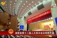 湖南省十二届人大四次会议开幕 杜家毫作政府工作报告