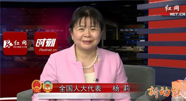 全国人大代表杨莉:基层代表热议精准扶贫 要让老百姓走得稳走得实(一)