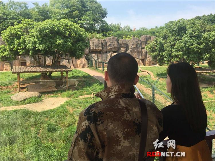 10日上午10点《时刻直播》探访长沙生态动物园