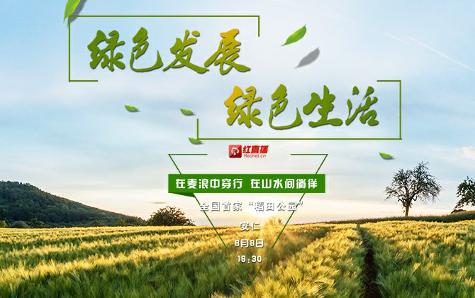 """【绿色发展 绿色生活】安仁:梦想中的田园 体验全国首家""""稻田公园"""""""