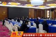 政协湖南省十二届一次会议举行分组讨论