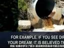 [视频]做梦都是假的吗?揭秘做梦的十大真相!
