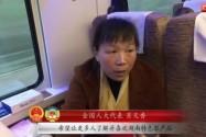 代表声音(三)带着黑茶和花生进京