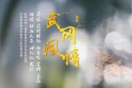 【全程回放】2018年湖南春季乡村旅游节开幕式