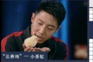 """[视频]历时21天!中国首只无壳孵化小鸡""""小茶缸""""诞生"""