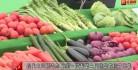 现代农业新姿态 中国·汉寿第三届蔬菜节拉开帷幕