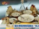 """[视频]瑞士青蛙博物馆展出""""拟人""""青蛙"""