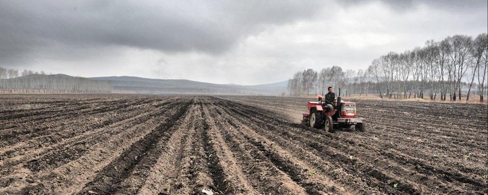 [视频]我国春耕生产全面展开