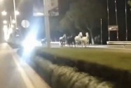 [视频]《中国机长》杀青定档9月30日